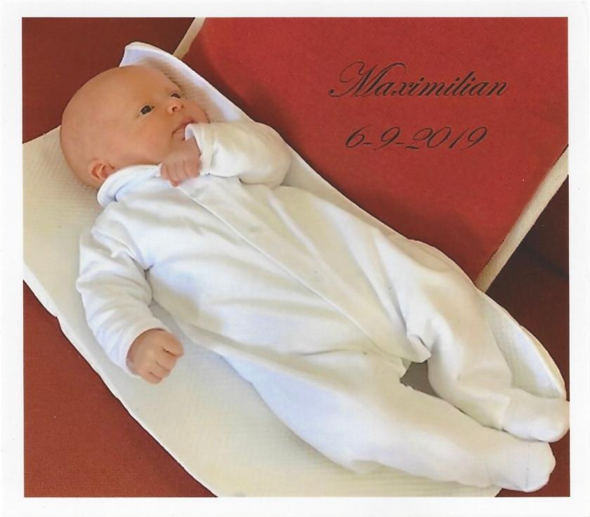 Birth of Archduke Maximilian Picture